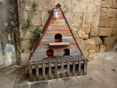 サン・ティアゴ教会 猫